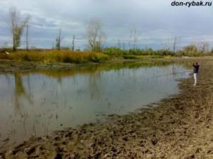 пересохший пруд