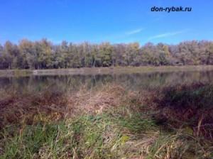 Река Дон