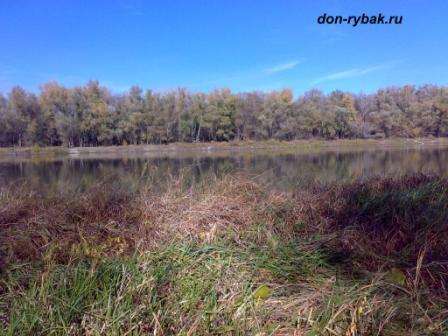 Браконьеры на реке дон